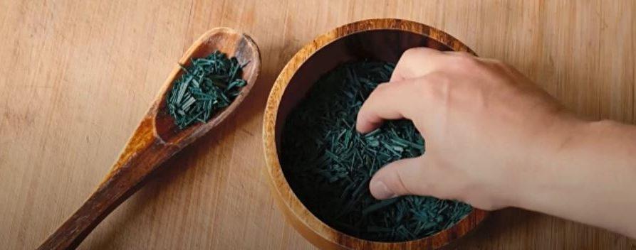 Plante Médicinale en Complément Alimentaire : Spiruline