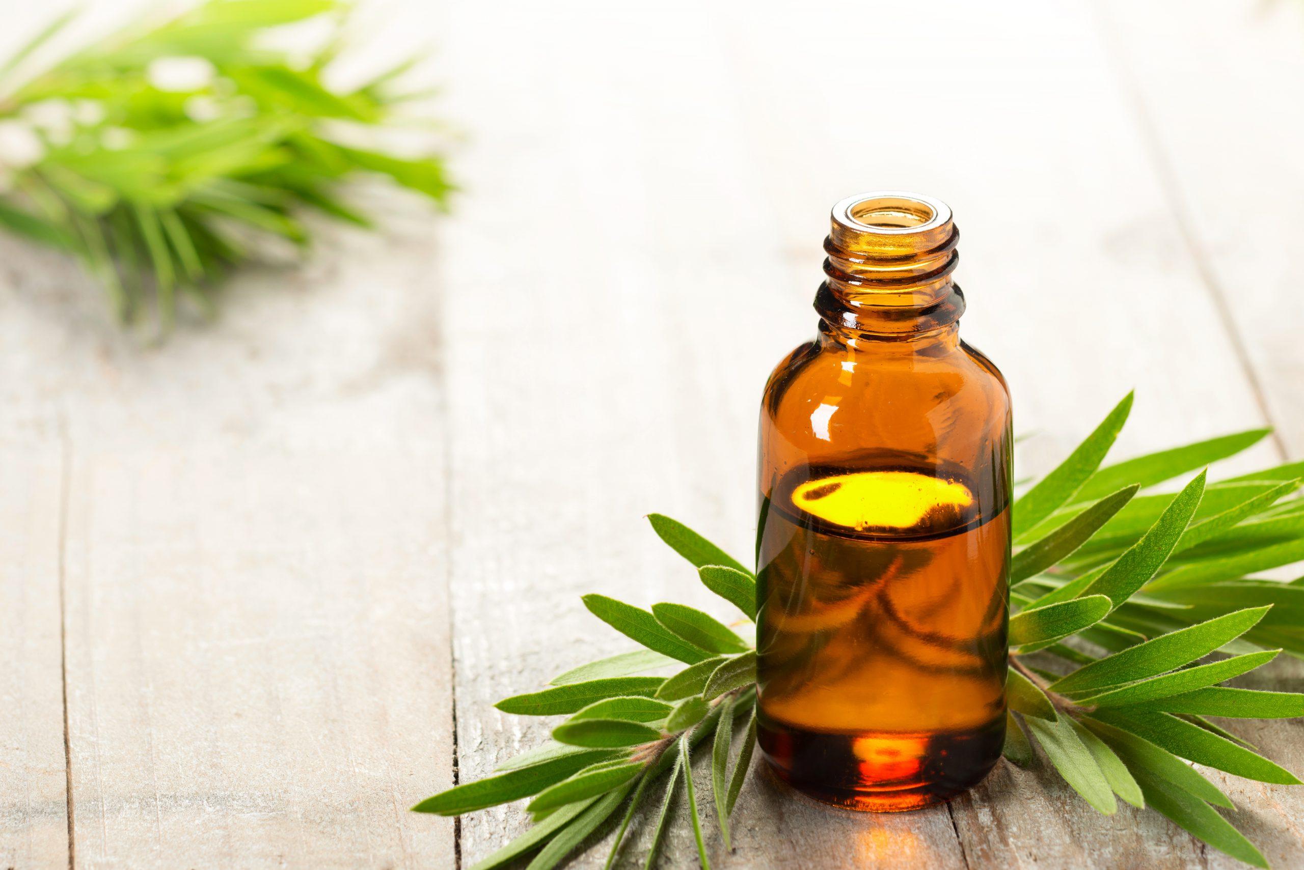 Quelles huiles essentielles pour combattre l'acné ?